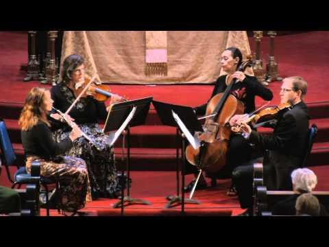 Robin Hansen, violin